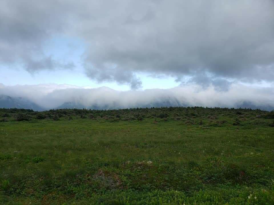 Fog Mountains Rural